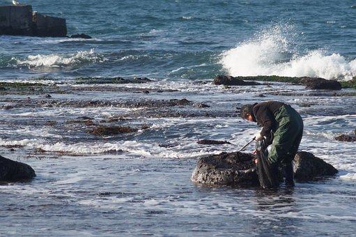 Sea, Waves, Winter, Coastal, Rock, Fishermen