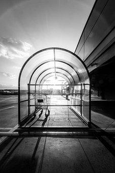 Sunset, Sun, Cart, Shopping Cart, Parking, Architecture