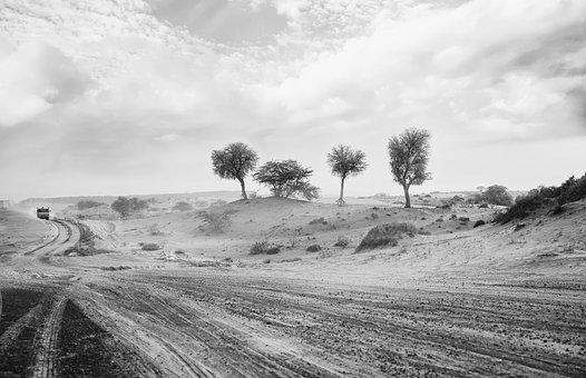 Desert, Monochrome, Travel, Road, Landscape, Tropical