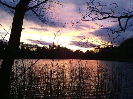 Lake, Sky, Nature, Landscape, Summer Evening, Dusk