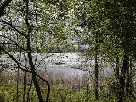 Lake, The Boatman, Landscape, Boat, Spring, Mouse Ears