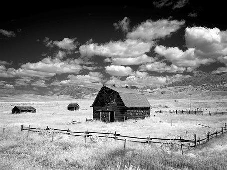 Barn, Stadl, Montana, Agriculture, Rural, Nature, Grass