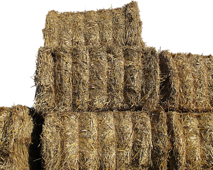 Straw Bales, Dried Grass, Agriculture, Barn