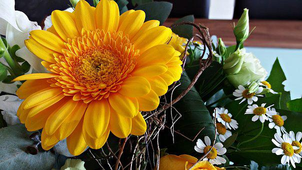 Flowers, Gerbera, Bouquet Of Flowers, Closeup