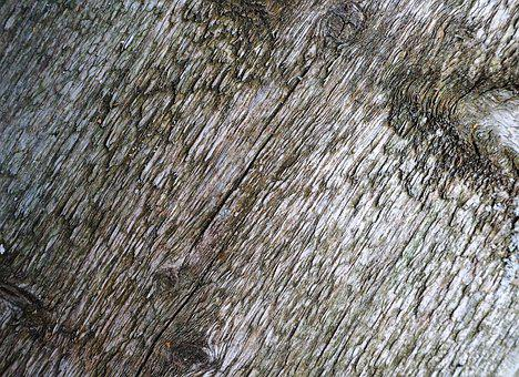 Wood, Board, Background, Boards, Grain, Old, Texture
