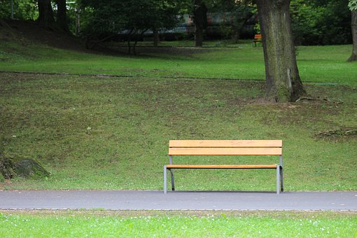 Bench, Park Bench, Park, Grass, Outdoors, Summer