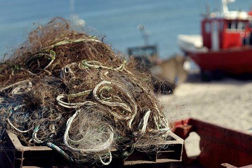 Fishing Nets, Cutter, Field, Fishing, Ship