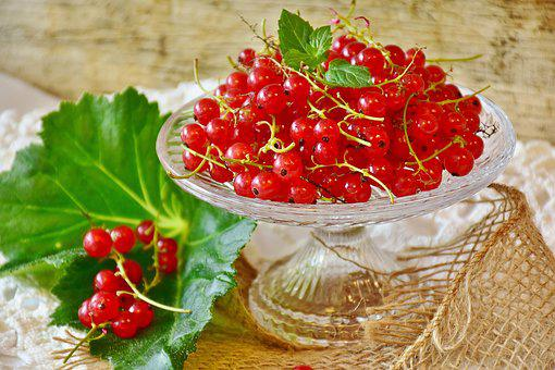 Currants, Red, Red Currant, Fruit, Garden Currant