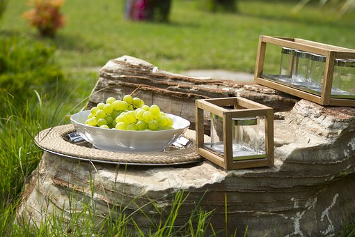 Raisin, Fruit, Garden, Green, Fresh, Healthy Lifestyle