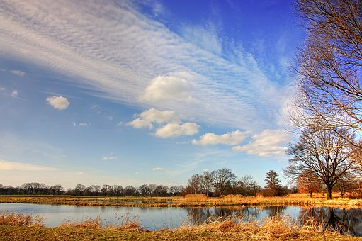 Pond, Sky, Lake, Water, Clouds, Landscape, Blue, Reed