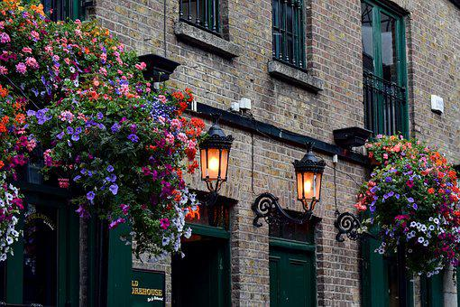 Pub, Dublin, Ireland, Floral Splendor, Flowers, Lights