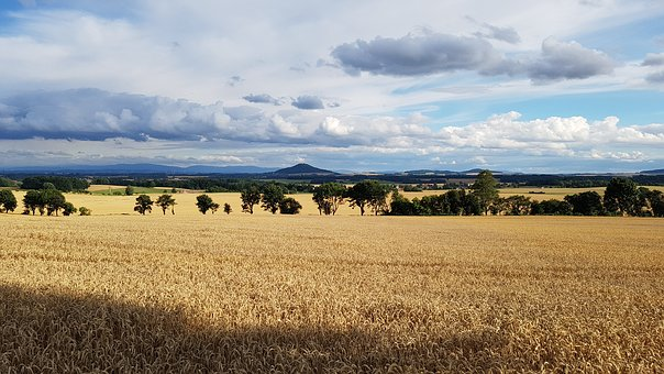 Country Crown, Görlitz, Cornfield, Clouds, Mountain