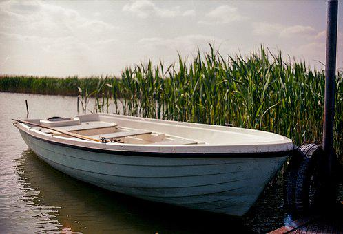 Boat, Lake, Green, Reed, Water, Activity, Adventure