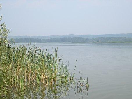 River, Beach, Sky, Grass, Reed, Fog, Landscape, Summer