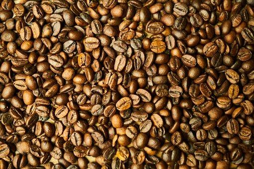 Core, Seed, Coffee, Healthy Food, Health, Fresh, Food