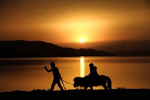 Silhouette, Pony, Child, Solar, Sunset