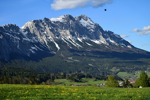 Mountain, Alps, Landscape, Bird, Nature