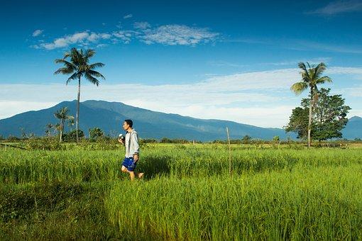 Small Town, Subaim, Agriculture, Landscape, Halmahera