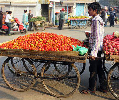 Street Trading, Tomatoes, Dealer, Man, Seller, India
