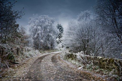 Frost, Scotland, Winter, Snow, Nature, Landscape, White