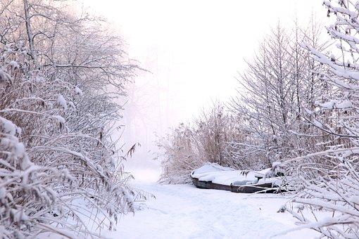 Winter, Snow, Ice, Freezing, Frozen, Frost, Landscape