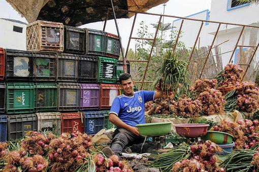 Onions, Onion Seller, Vegetables, Dealer, Market, Sell