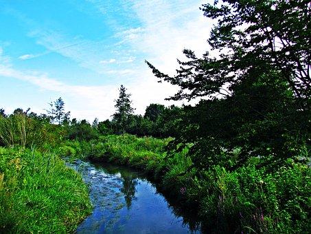 Brook, Water, Landscape, Nature, The Brook, Torrent