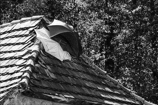 A Leaky Roof, Fix, Umbrella, Where Does Mr Tau
