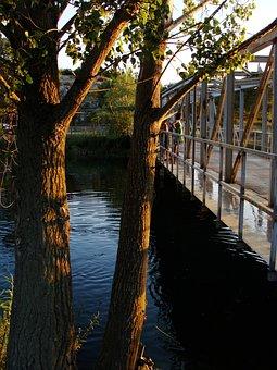 Bridge, Iron, Steel, Transport, Water, River, Metal