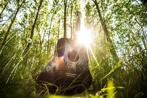Acoustic Guitar, Musical Instrument, Guitar, Music