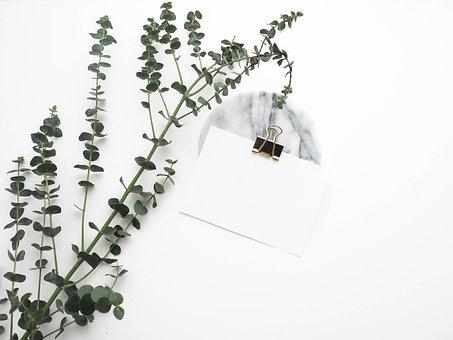 Artificial, Green, Plant, Leaf, Paper Clip, White