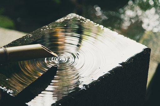 Bamboo, Water, Liquid, Nature, Well