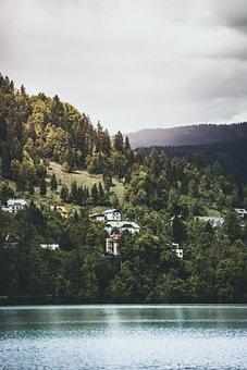 Green, Trees, Plants, Mountain, Village, Houses