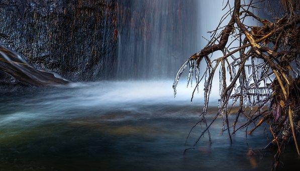 Waterfalls, Nature, Roots, Tree, Plants