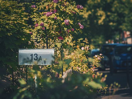 Mailbox, Outside, Green, Trees, Flowers