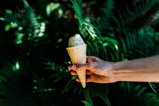 Green, Leaf, Plant, Nature, Outdoor, Ice Cream, Sweets