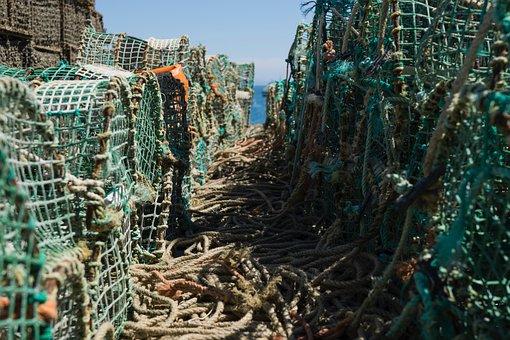 Fishing, Net, Rope, Sea, Sunny