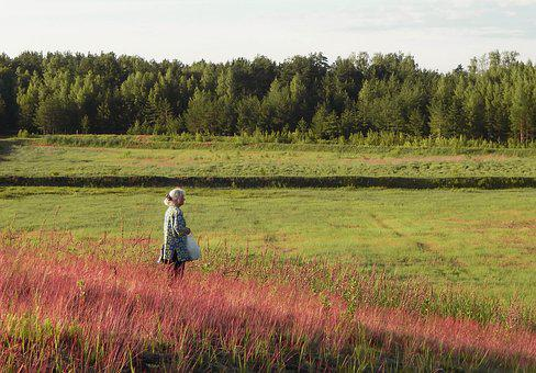 Field, Sky, Woman, Summer, People, Grass, Green