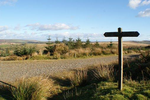 Signpost, Journey, Hike, Dartmoor, Sky, England, Moor