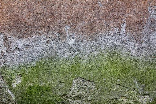 Concrete, Wall, Texture, Green