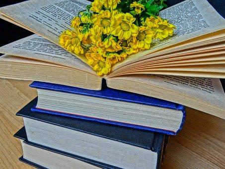 Books, Read, Novel, Book Worm, Story, Leisure