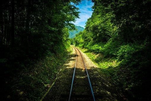 Railway, Track, Green, Trees, Plants, Nature, Travel