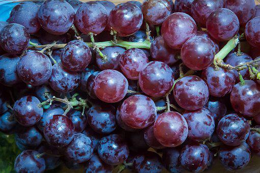 Grapes, Fruit, Winegrowing, Red Grapes, Wine, Vine