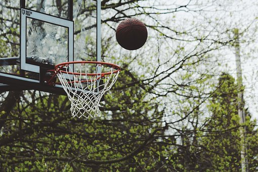 Green, Trees, Plant, Nature, Outdoor, Basketball, Ring