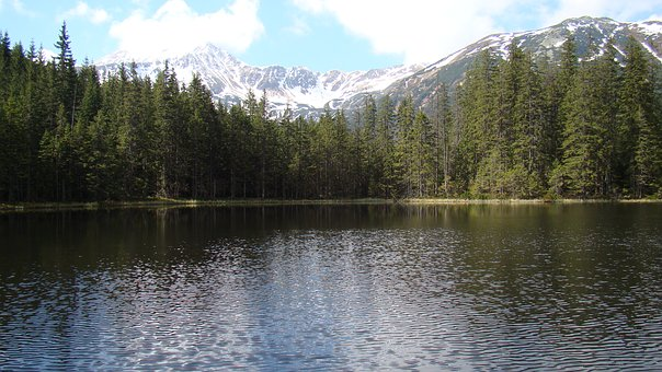 Mountains, Lake, Tatry, Buried, Landscape, View, Nature