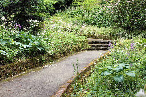 Garden, Secret, Vintage, Park, Nature, Green, Day