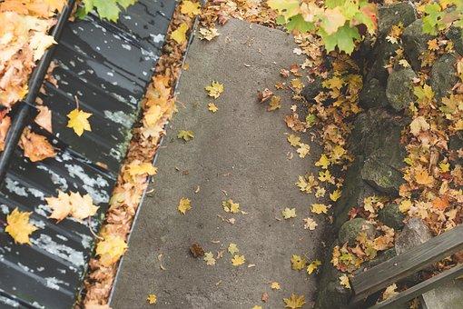 Roof, Street, Road, Autumn, Autumn Leaves