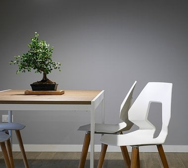 Interior, Design, Table, Chairs, Furniture, Green