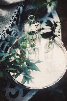 Green, Leaf, Plant, Nature, Blur, Glass, Jar, Display