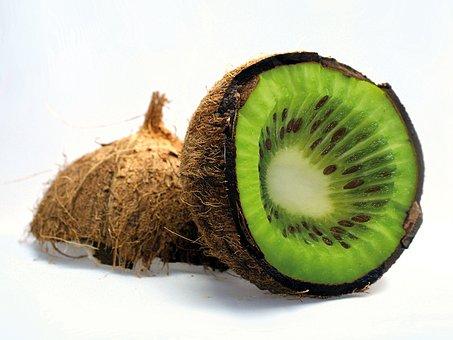 Coconut, Kiwi, Fruit, Vitamin, Slice, Green, Vegetale